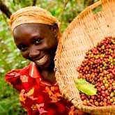 Эфиопия, Йемен, Сьерра-Леоне, Танзания, Уганда, ЮАР