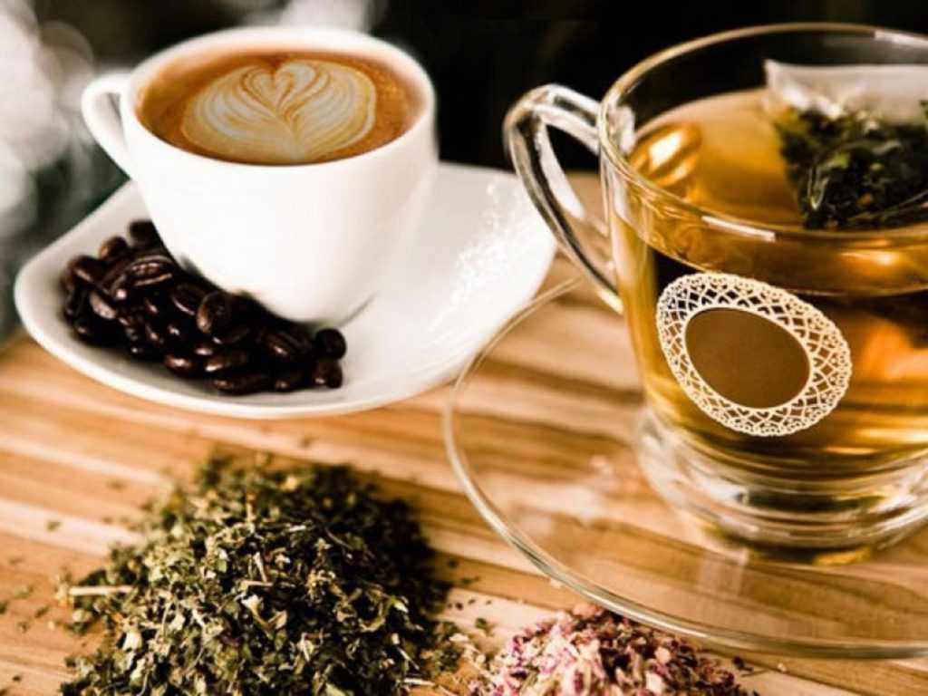 В чае кофеина больше, чем в кофе