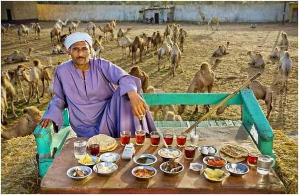 араб на фоне верблюдов