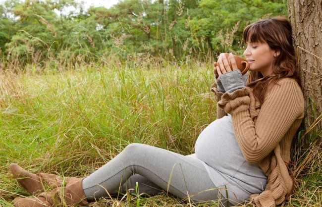 беременная пьет почечный чай