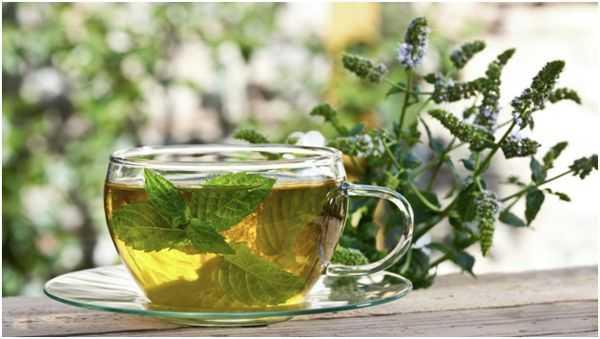 чай с душицей и мятой