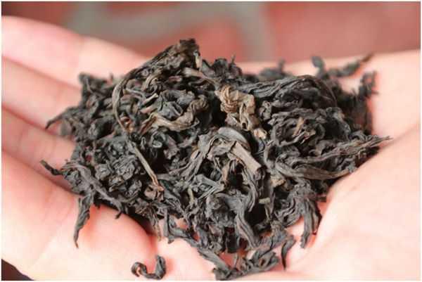 чайный лист на ладони