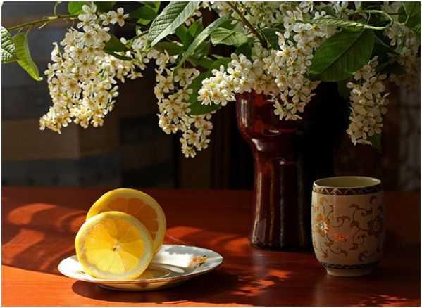 кружка, лимон, черемуха